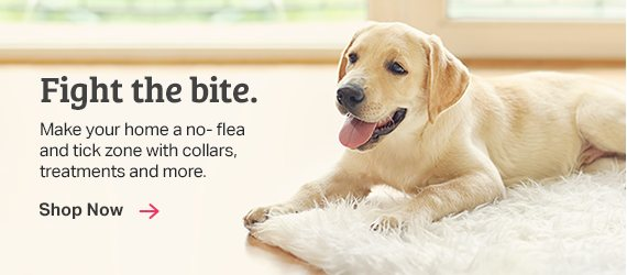 Shop Flea & Tick Care