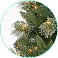 shop spruce shop spruce